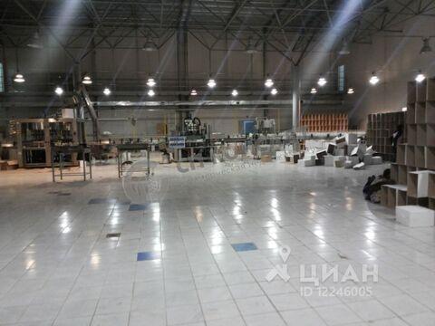 Производственное помещение в Владимирская область, Петушки ул. 3-го . - Фото 1