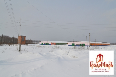 Продается Ресторан / кафе, Непейно д, 3600м2 - Фото 2