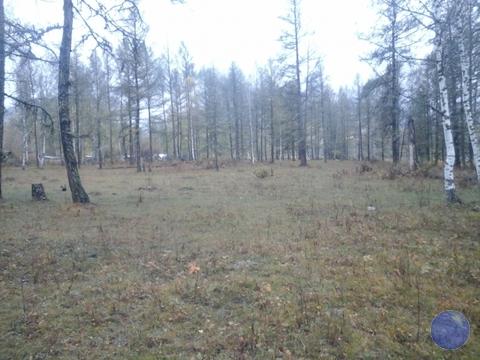 Продажа участка, Усть-Кокса, Усть-Коксинский район - Фото 4