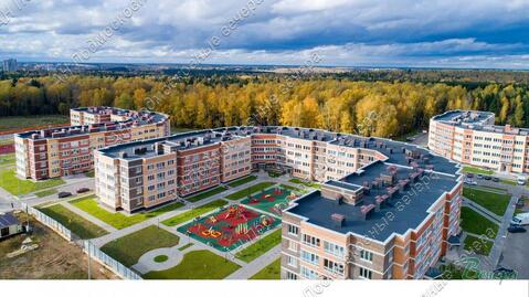 Московская область, городской округ Истра, деревня Высоково, . - Фото 3