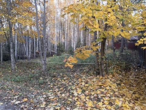 Продаю участок, 20 соток, Киевское ш, новая Москва, в лесу, 3,8 млн.р - Фото 2