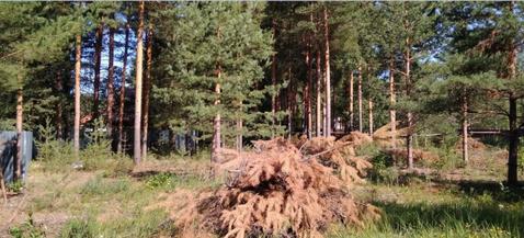 Судогодский р-он, Улыбышево п, Спутник, земля на продажу - Фото 3