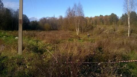 Участок ИЖС 15 соток на озере Гусиное в поселке Приладожское - Фото 3