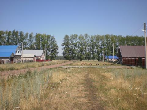 Продается земельный участок в с. Николаевка Кармаскалинского района - Фото 4