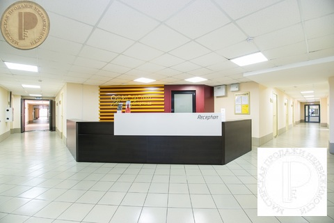 Офис в Юном берегу - Фото 4