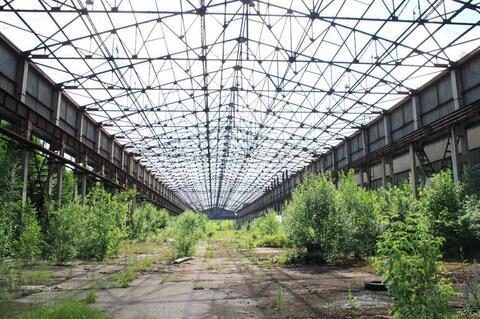 Сдам производственно-складской корпус 62 180 кв.м. - Фото 4