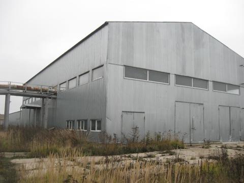 Завод по производству целлюлозы 9300 кв.м. - Фото 3