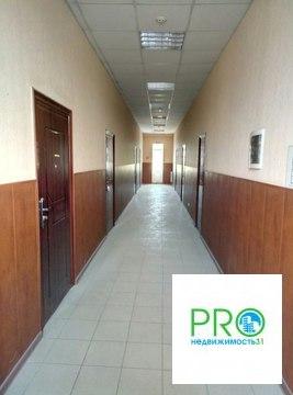 Коммерческое помещение , 1 линия, проезжая часть - Фото 4