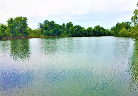 1400 соток с прямым выходом на пруд всего в 3 км. от горо - Фото 5