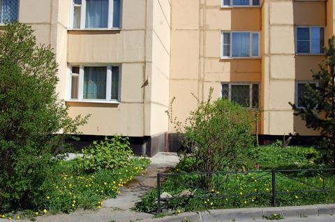 Продается трехкомнатная квартира рядом с парком - Фото 4