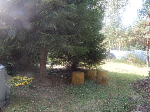 Участок 6 соток рядом с д. Субботино в лесу - Фото 1