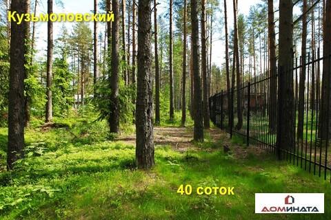 Прекрасный участок 40 соток в п. Кузьмоловский - Фото 2