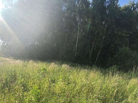 Участок, 30 соток, д. Оксино Чеховский район - Фото 5