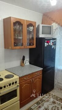 Аренда квартиры, Новый Уренгой - Фото 1