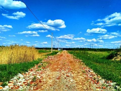 Судогодский р-он, Погребищи д, земля на продажу - Фото 4