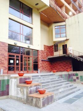 Квартира в г.Сочи - Фото 5