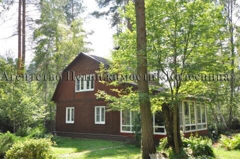 Барсуки. Покров. Эксклюзивный лесной участок 80соток с небольшим домом - Фото 4