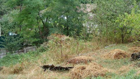 К продаже предлагается земельный участок 4 сот, ул.Грибоедова(верх) - Фото 2