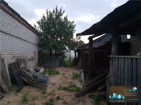 Дзу Лесная - Фото 4