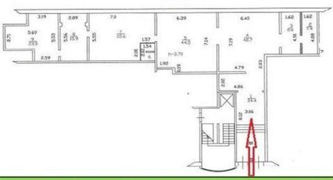 Сдам торговое помещение 215 кв.м, м. Площадь Ленина - Фото 2