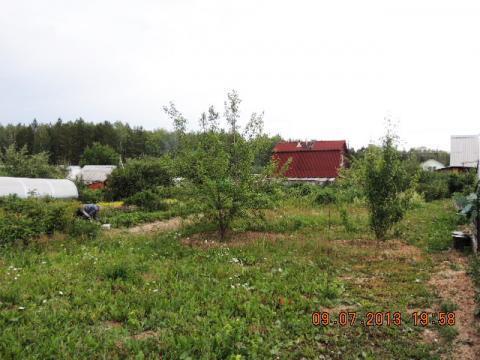 Исток 9 соток сад Оборонснабсбыт продам - Фото 4