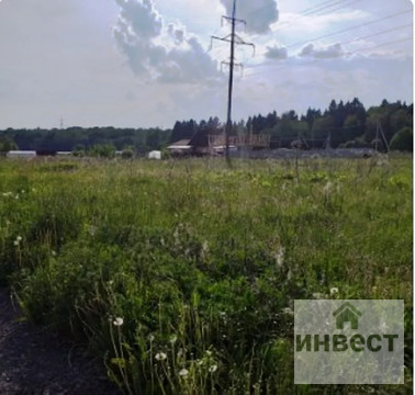 Подмосковье, Наро-Фоминский район, Новая Ольховка