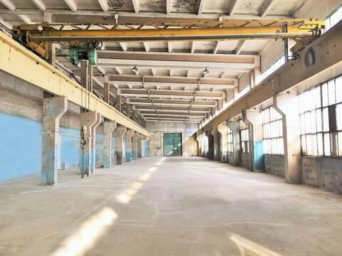 Сдается склад 1262 кв. м. - Фото 3