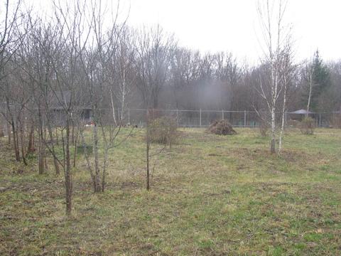 Участок в деревне Александровка - Фото 2