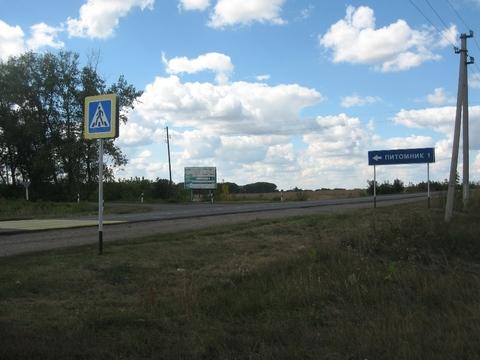 Роща (лесной участок) 330 Га в Воронеже, под дачный поселок. - Фото 2