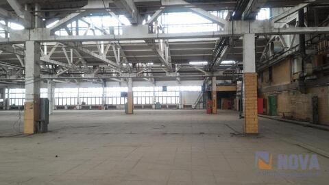Аренда производственного помещения 2500 м. кв. - Фото 2