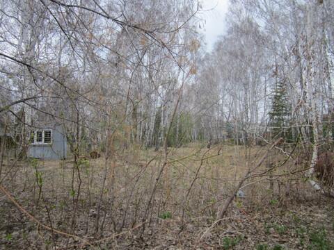 Участок СНТ Русь - Фото 3