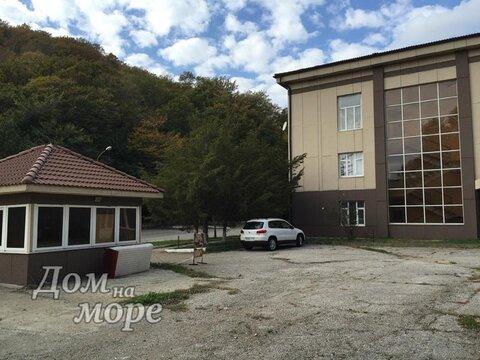 Производственная база участок 4га Ольгинка - Фото 1