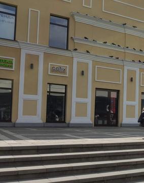 Аренда торгового помещения 275.3 м2 - Фото 5