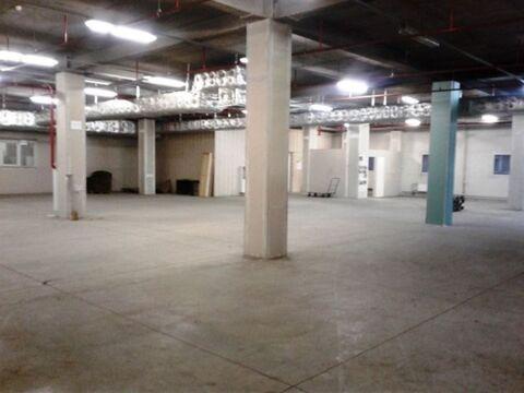 Сдам складское помещение 573 кв.м, м. Лесная - Фото 5