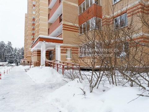 2-комн. квартира, Пушкино, ул Лесная, 69к1 - Фото 3
