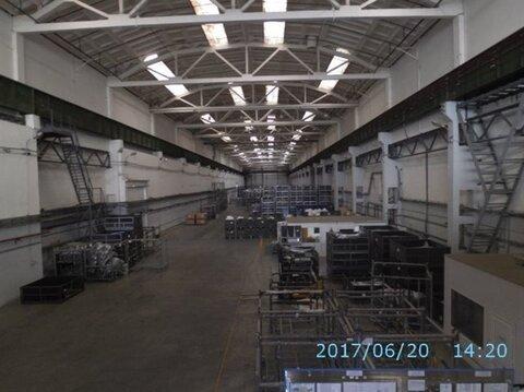 Продам производственное помещение 23262 кв.м, м. Звездная - Фото 5