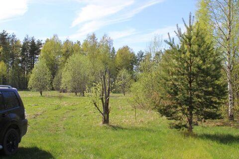Земельный участок в д. Валяницы - Фото 2