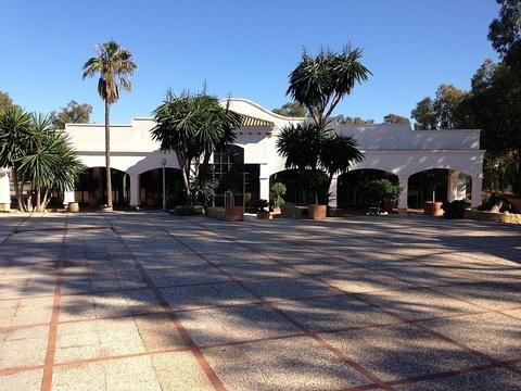 Продажа отеля в Аликанте - Фото 5