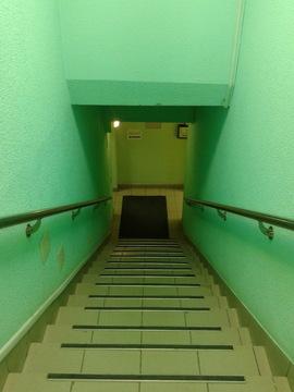 Сдам универсальное помещение в центре 56 кв.м. - Фото 2