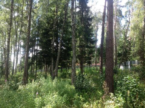 Д. Солослово кп ДПК «Гранит» красивый рельефный лесной участок 1.13 Га - Фото 2