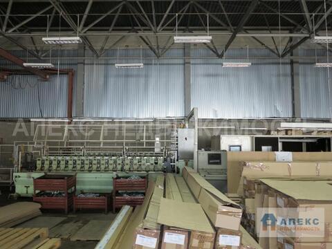 Аренда помещения пл. 900 м2 под производство, склад, Старая Купавна . - Фото 5