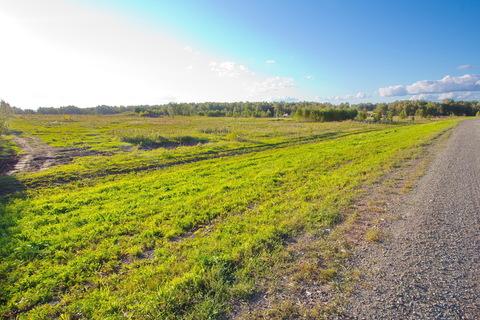 Продам земельный участок 1,6 га. промназначение - Фото 4
