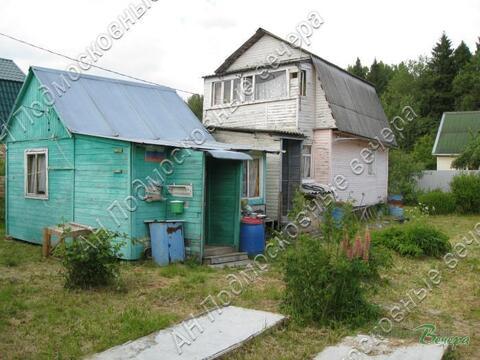 Новорижское ш. 55 км от МКАД, Анашкино, Участок 8 сот. - Фото 1