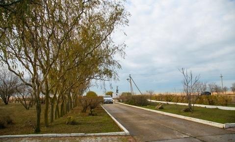 Продам усадьбу 892 кв.м. на побережье Азовского моря - Фото 2