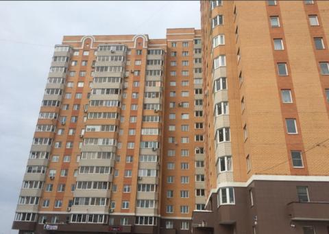 Помещение свободного назначения 39 кв.м. Адрес: ул.Гагарина д. 65 - Фото 3
