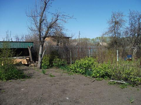 """Продам сад в СНТ """"Металлург"""" - Фото 5"""
