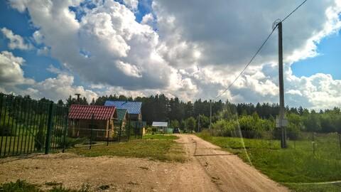 Участок 25 соток у самого соснового леса под Псковом - Фото 1