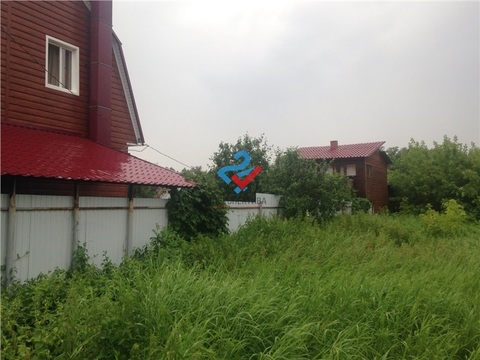Чернозерский кордон , Сосновый бор - Фото 3