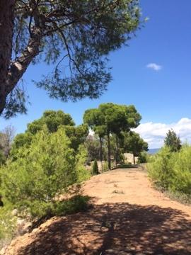 Продажа земельного участка в Испании - Фото 2