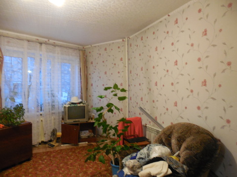 4-ая квартира по ул.Мичурина - Фото 1